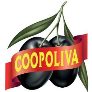 كوبوليفا (أجرو سيفيلا)